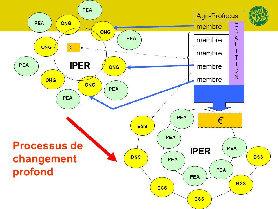 ONG PEA IPER Agri-Profocus membre COALITIONCOALITION IPER PEA BSS Processus de changement profond