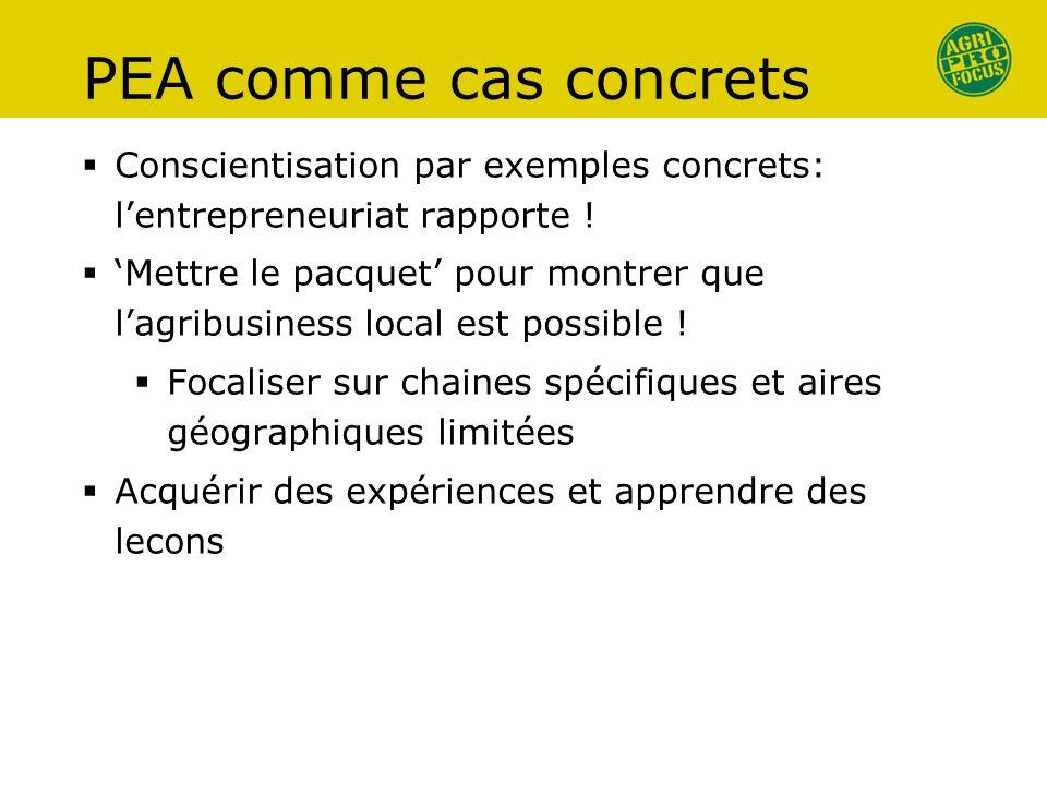 PEA comme cas concrets Conscientisation par exemples concrets: lentrepreneuriat rapporte .