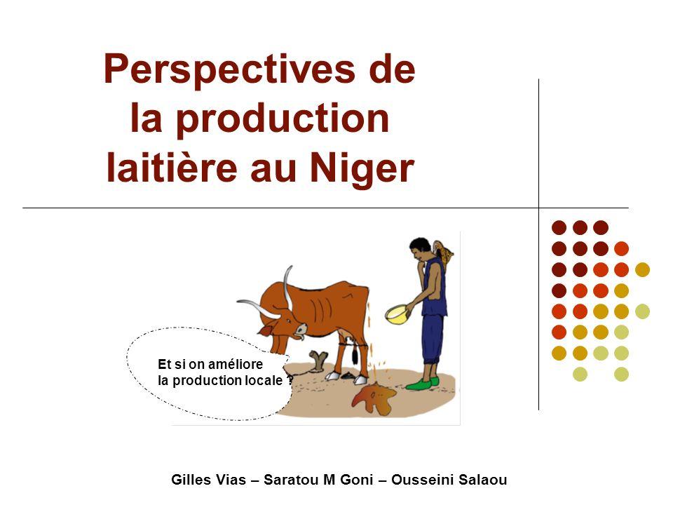 Perspectives de la production laitière au Niger Gilles Vias – Saratou M Goni – Ousseini Salaou Et si on améliore la production locale