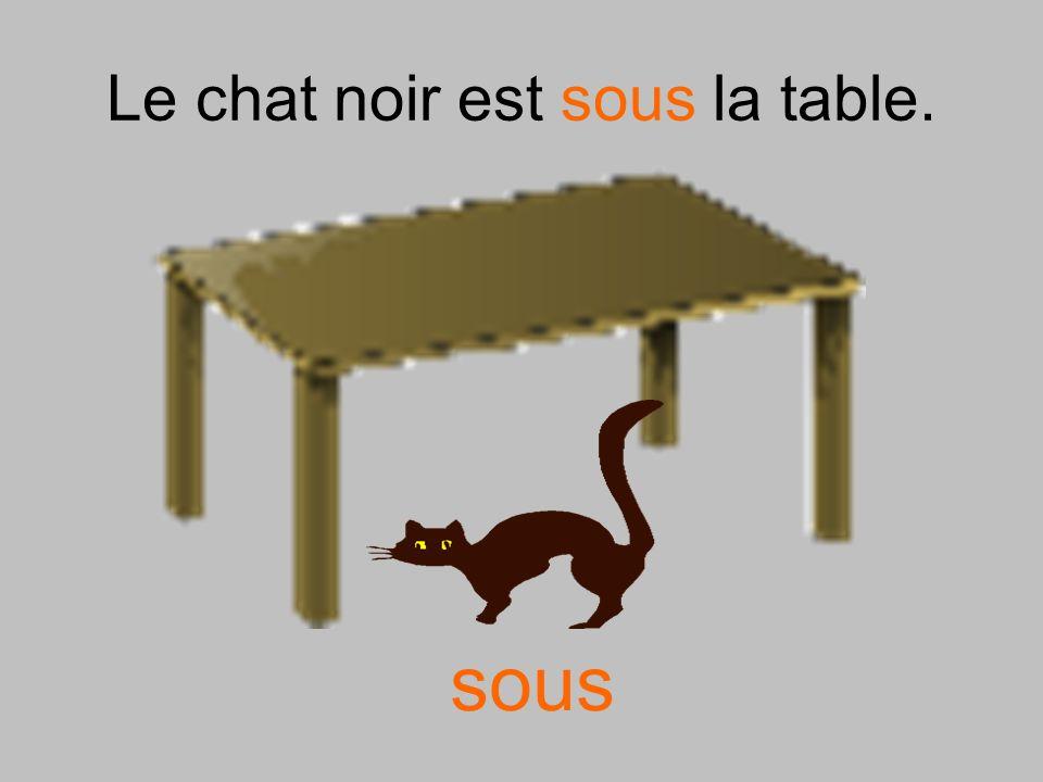 Le chat noir est sous la table.