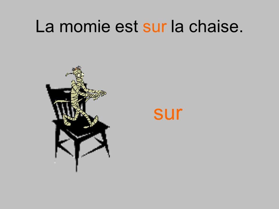 La momie est sur la chaise. sur