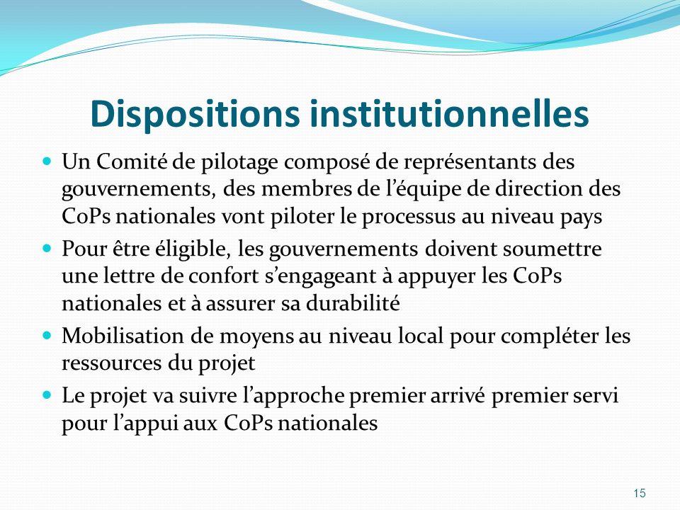 Dispositions institutionnelles Un Comité de pilotage composé de représentants des gouvernements, des membres de léquipe de direction des CoPs national