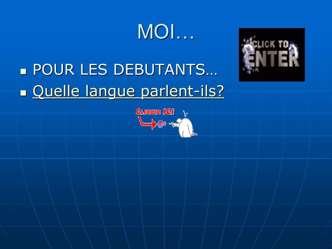 MOI… POUR LES DEBUTANTS… POUR LES DEBUTANTS… Quelle langue parlent-ils.