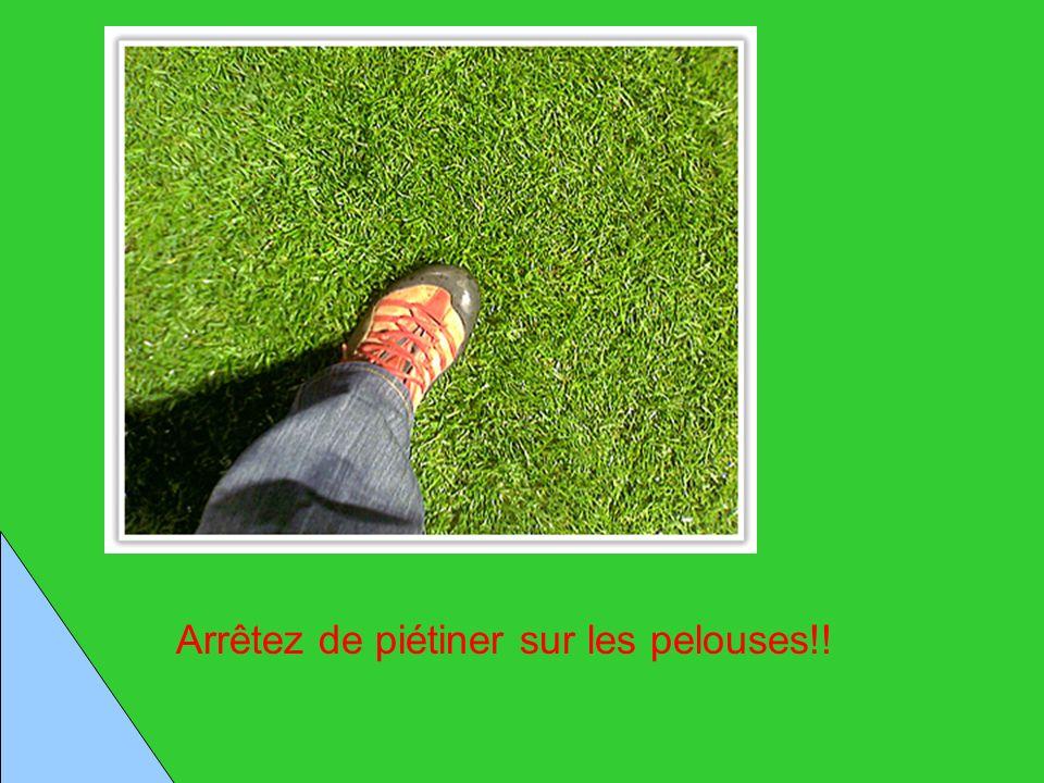 Arrêtez de piétiner sur les pelouses!!