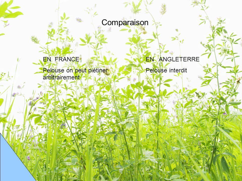 Comparaison EN FRANCE Pelouse on peut piétiner arbitrairement EN ANGLETERRE Pelouse interdit