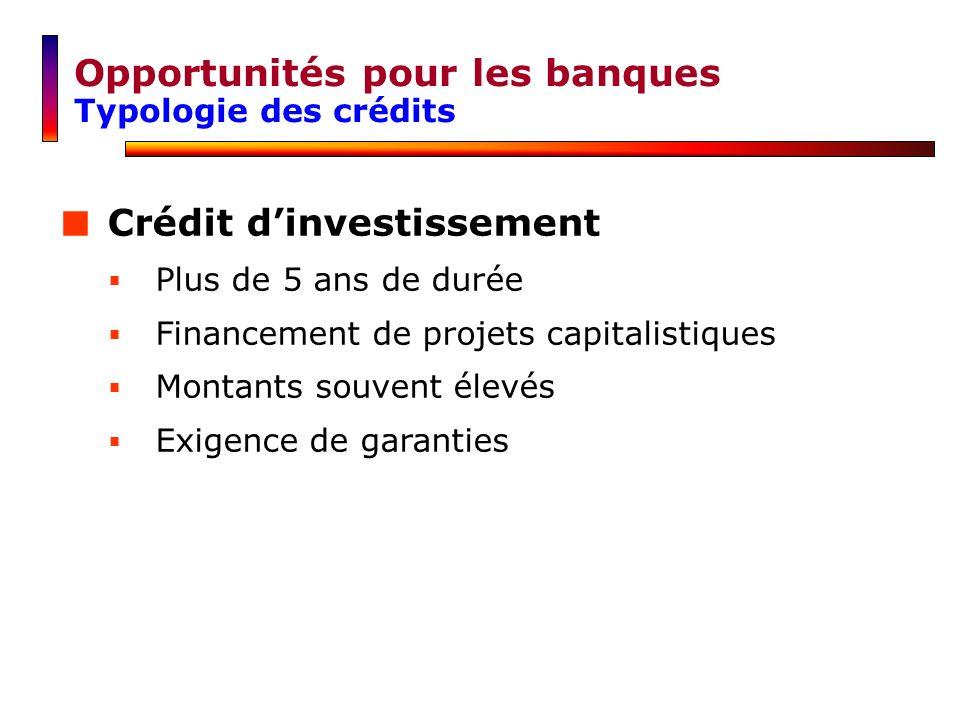 Opportunités pour les banques Typologie des crédits Crédit dinvestissement Plus de 5 ans de durée Financement de projets capitalistiques Montants souv