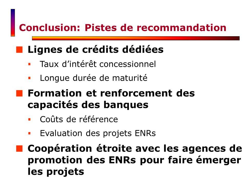 Conclusion: Pistes de recommandation Lignes de crédits dédiées Taux dintérêt concessionnel Longue durée de maturité Formation et renforcement des capa