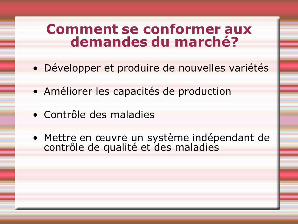 Comment se conformer aux demandes du marché? Développer et produire de nouvelles variétés Améliorer les capacités de production Contrôle des maladies