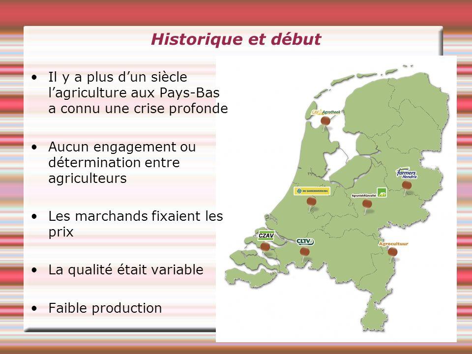 Historique et début Il y a plus dun siècle lagriculture aux Pays-Bas a connu une crise profonde Aucun engagement ou détermination entre agriculteurs Les marchands fixaient les prix La qualité était variable Faible production