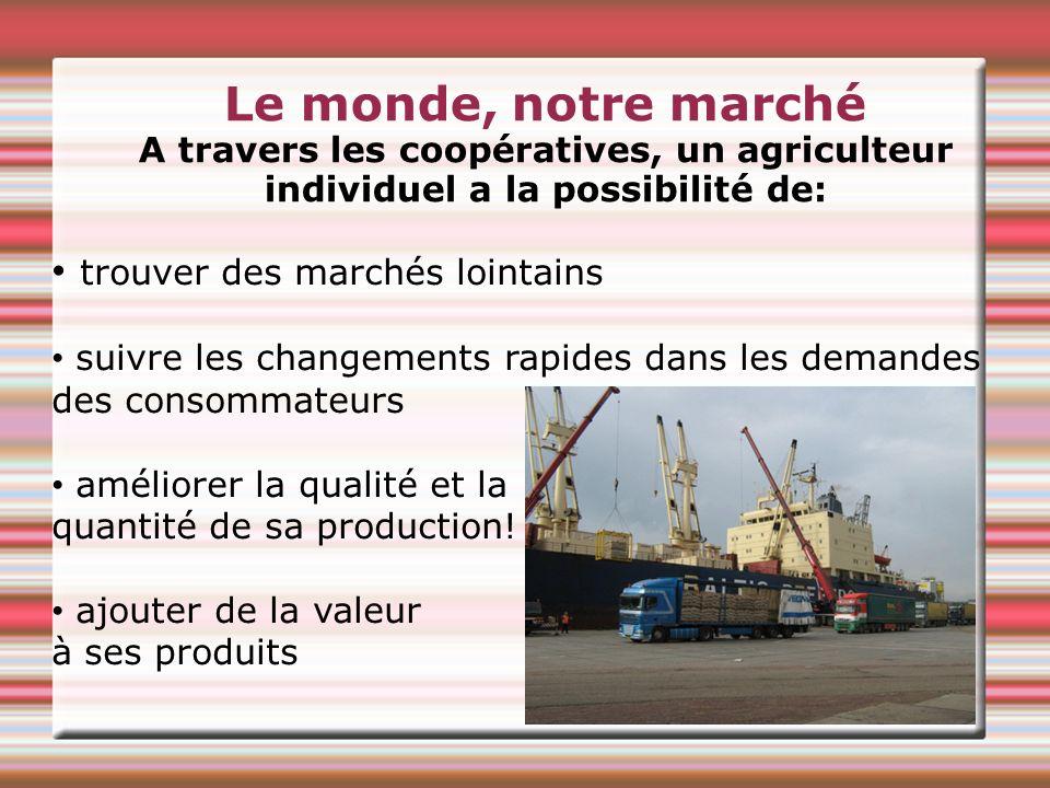 Le monde, notre marché A travers les coopératives, un agriculteur individuel a la possibilité de: trouver des marchés lointains suivre les changements