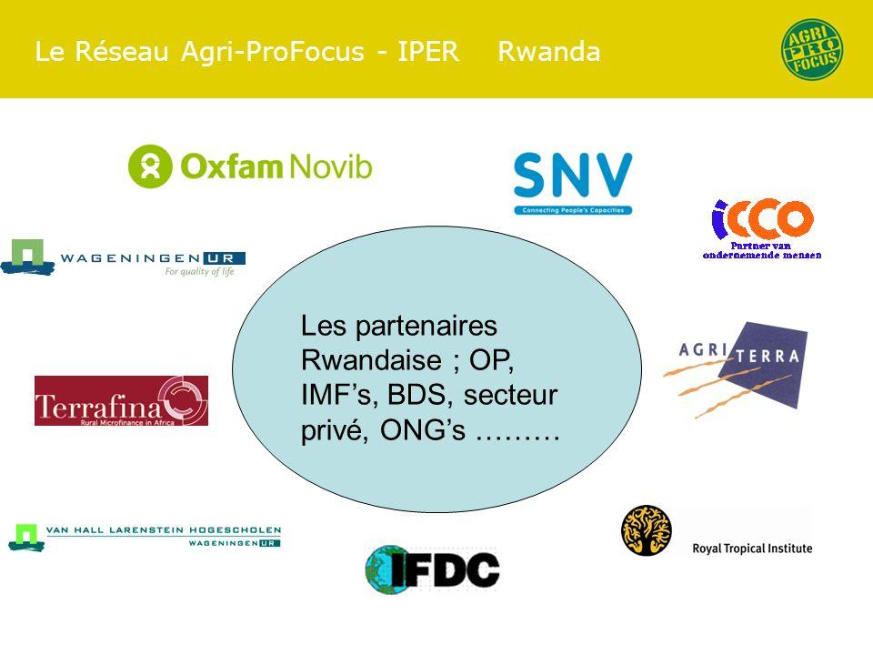 Le Réseau Agri-ProFocus - IPER Rwanda Les partenaires Rwandaise ; OP, IMFs, BDS, secteur privé, ONGs ………