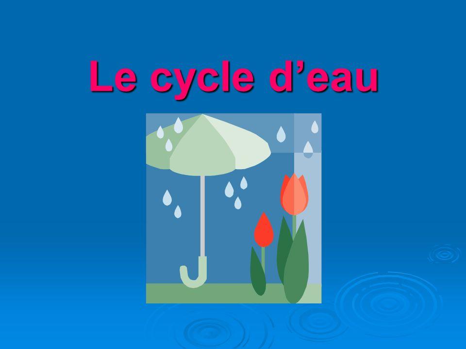 Le cycle deau