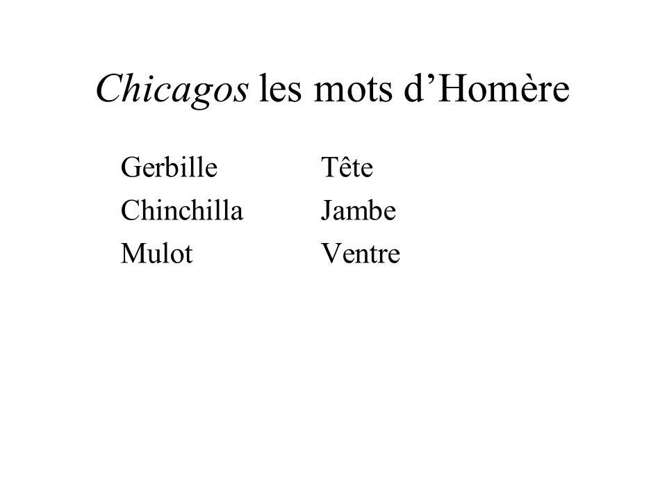 Chicagos les mots dHomère GerbilleTête ChinchillaJambe MulotVentre