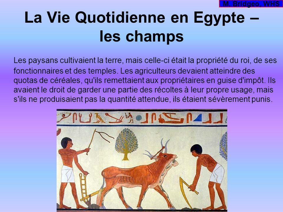 La Vie Quotidienne en Egypte – les champs Les paysans cultivaient la terre, mais celle-ci était la propriété du roi, de ses fonctionnaires et des temp