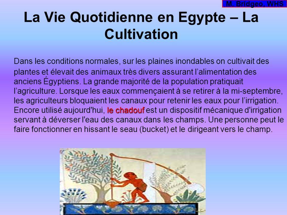 La Vie Quotidienne en Egypte – La Cultivation le chadouf Dans les conditions normales, sur les plaines inondables on cultivait des plantes et élevait