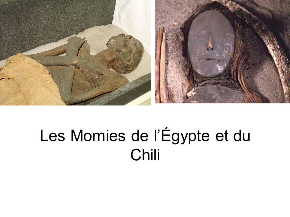 Les Momies de lÉgypte et du Chili