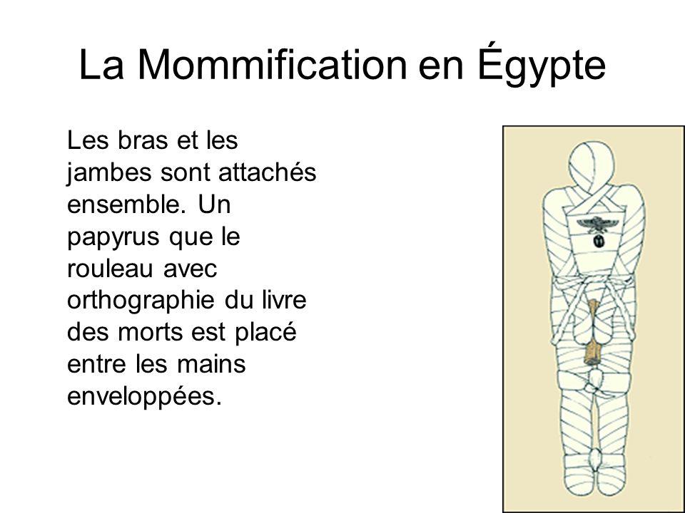 La Mommification en Égypte Les bras et les jambes sont attachés ensemble. Un papyrus que le rouleau avec orthographie du livre des morts est placé ent