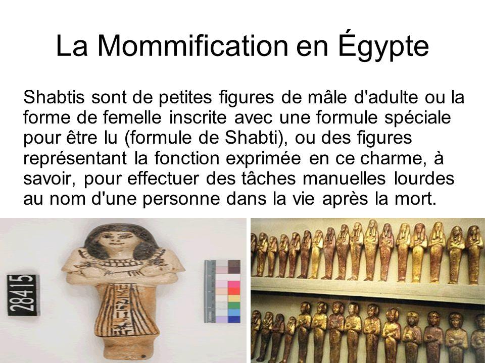 La Mommification en Égypte Shabtis sont de petites figures de mâle d'adulte ou la forme de femelle inscrite avec une formule spéciale pour être lu (fo