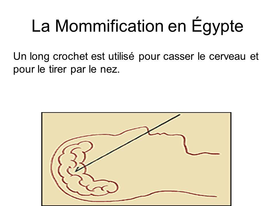 La Mommification en Égypte Un long crochet est utilisé pour casser le cerveau et pour le tirer par le nez.