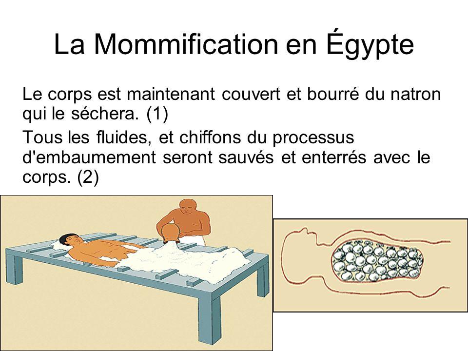 La Mommification en Égypte Le corps est maintenant couvert et bourré du natron qui le séchera. (1) Tous les fluides, et chiffons du processus d'embaum
