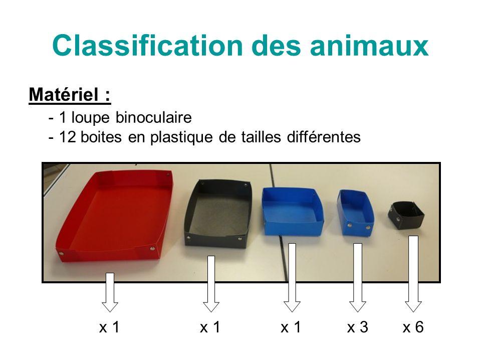Classification des animaux Matériel : - 1 loupe binoculaire 2 boites en plastique de tailles différentes x 1 x 3x 6