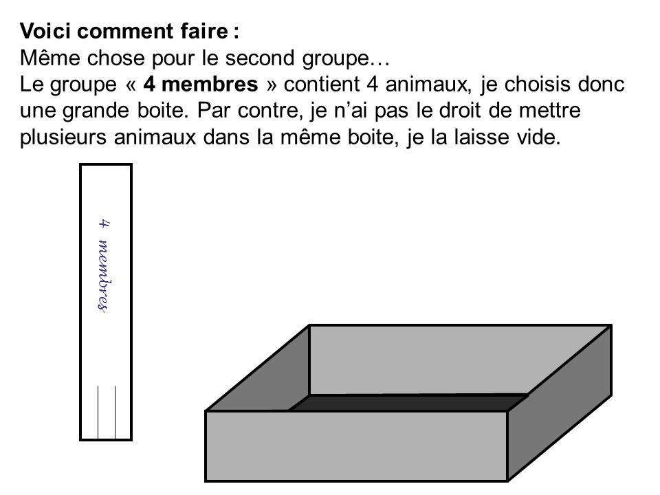 Voici comment faire : Même chose pour le second groupe… Le groupe « 4 membres » contient 4 animaux, je choisis donc une grande boite. Par contre, je n
