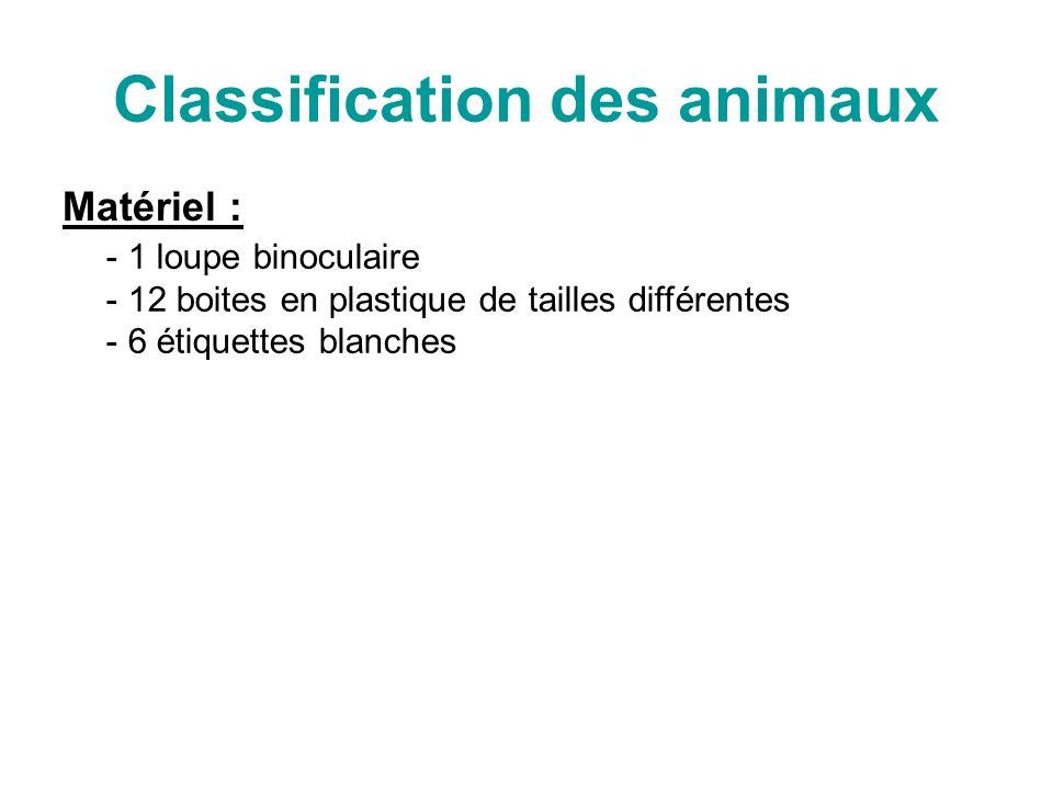 Classification des animaux Matériel : - 1 loupe binoculaire 2 boites en plastique de tailles différentes - 6 étiquettes blanches