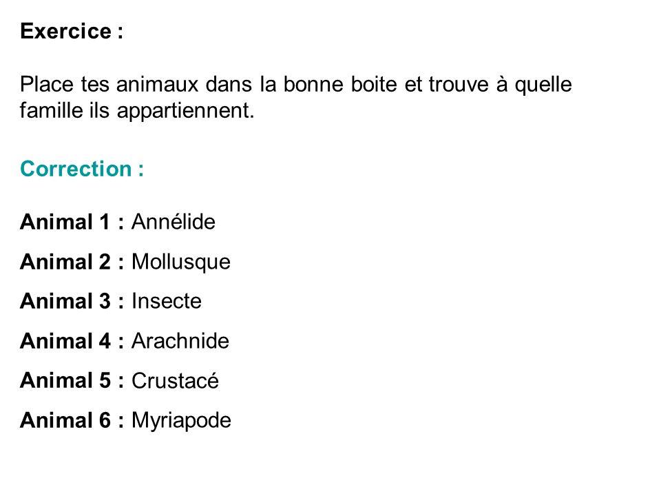 Exercice : Place tes animaux dans la bonne boite et trouve à quelle famille ils appartiennent. Correction : Animal 1 : Animal 2 : Animal 3 : Animal 4
