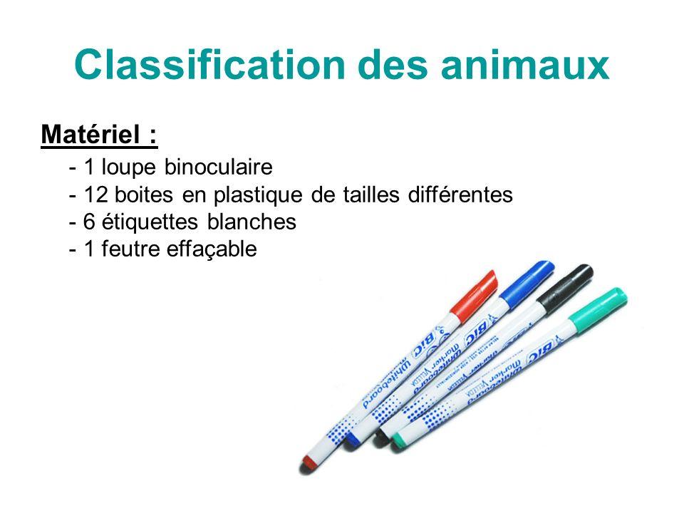Classification des animaux Matériel : - 1 loupe binoculaire 2 boites en plastique de tailles différentes - 6 étiquettes blanches - 1 feutre effaçable - 6 animaux morts dans des boites (ne pas les toucher)