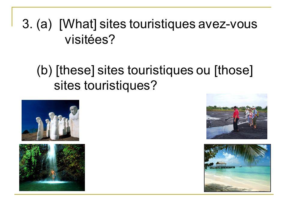 3. (a) [What] sites touristiques avez-vous visitées.