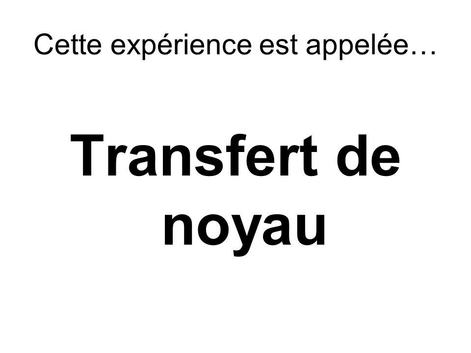 Cette expérience est appelée… Transfert de noyau