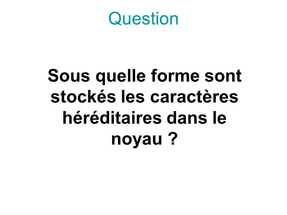 Question Sous quelle forme sont stockés les caractères héréditaires dans le noyau ?
