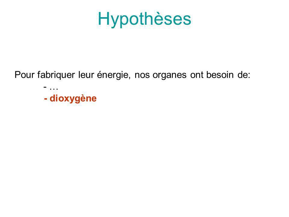 Hypothèses Pour fabriquer leur énergie, nos organes ont besoin de: - … - dioxygène