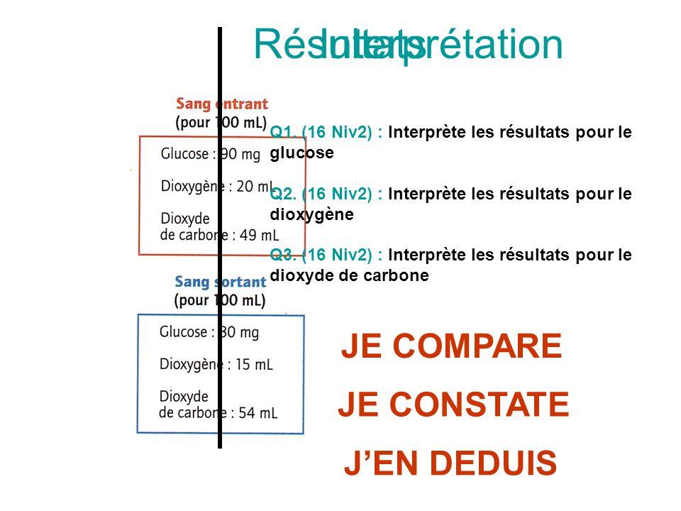 Interprétation Q1. (16 Niv2) : Interprète les résultats pour le glucose Q2. (16 Niv2) : Interprète les résultats pour le dioxygène Q3. (16 Niv2) : Int