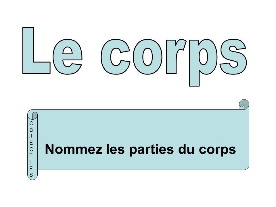 Nommez les parties du corps OBJECTIFSOBJECTIFS
