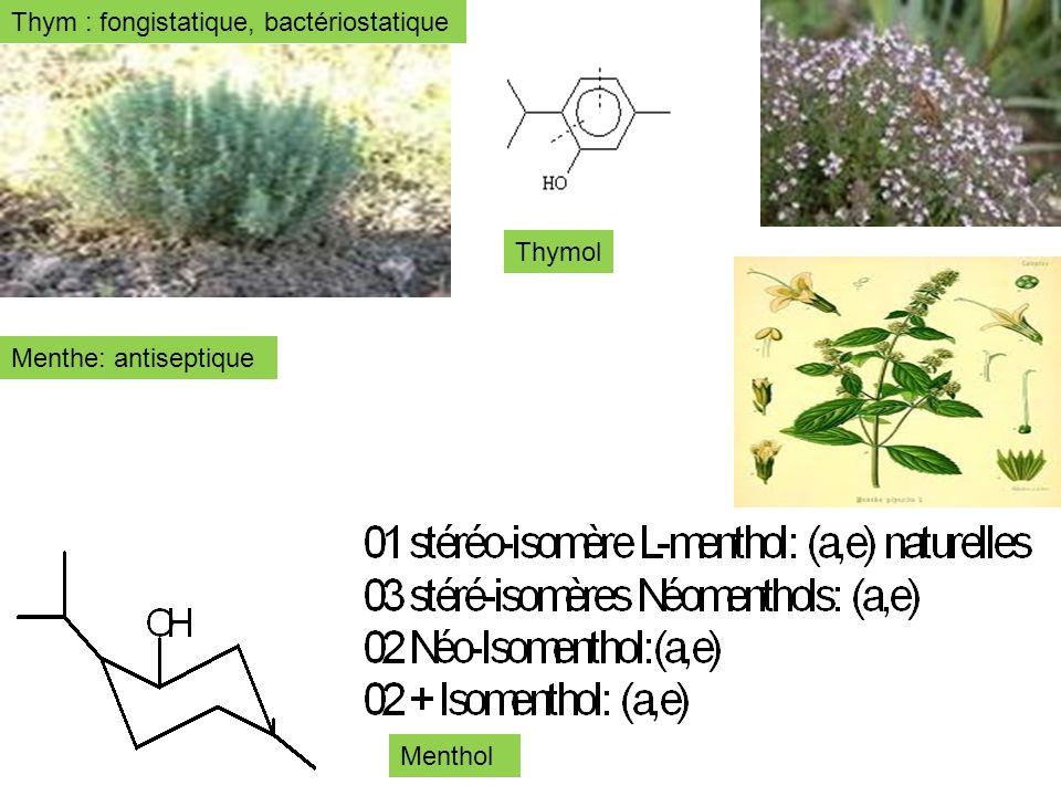 Thym : fongistatique, bactériostatique Menthe: antiseptique Thymol Menthol