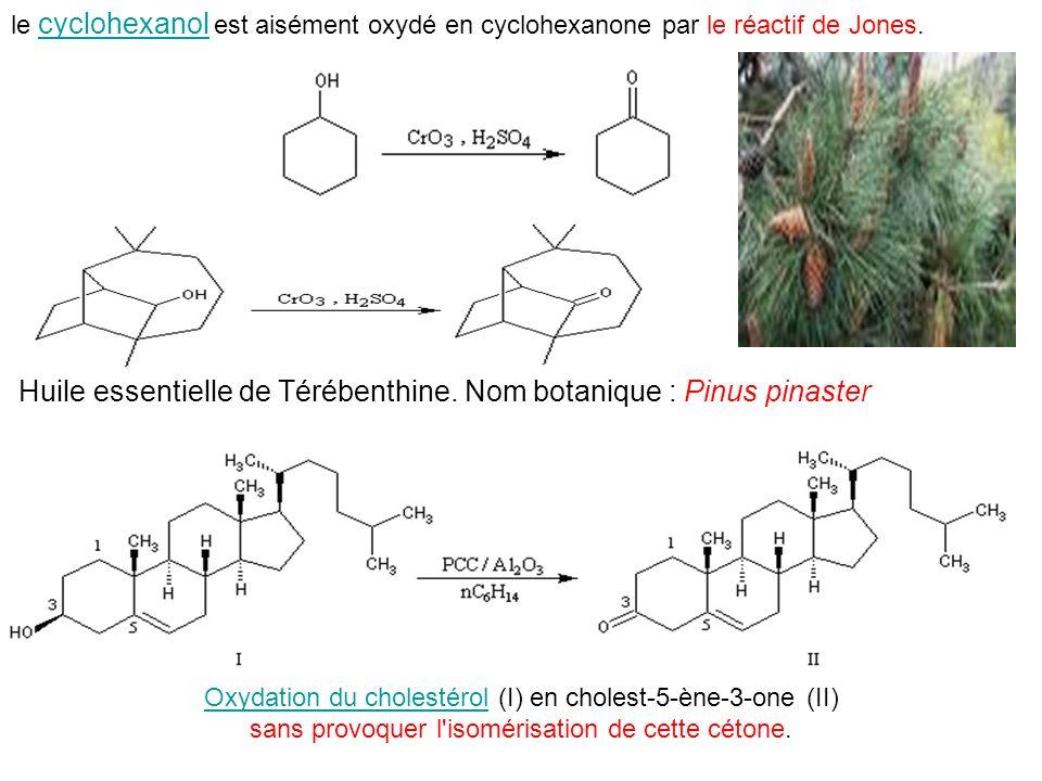 le cyclohexanol est aisément oxydé en cyclohexanone par le réactif de Jones. cyclohexanol Huile essentielle de Térébenthine. Nom botanique : Pinus pin