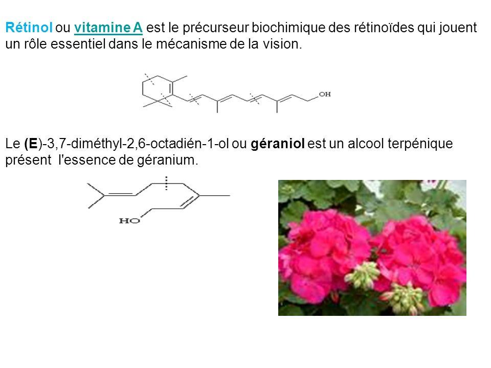 Rétinol ou vitamine A est le précurseur biochimique des rétinoïdes qui jouent un rôle essentiel dans le mécanisme de la vision.vitamine A Le (E)-3,7-d