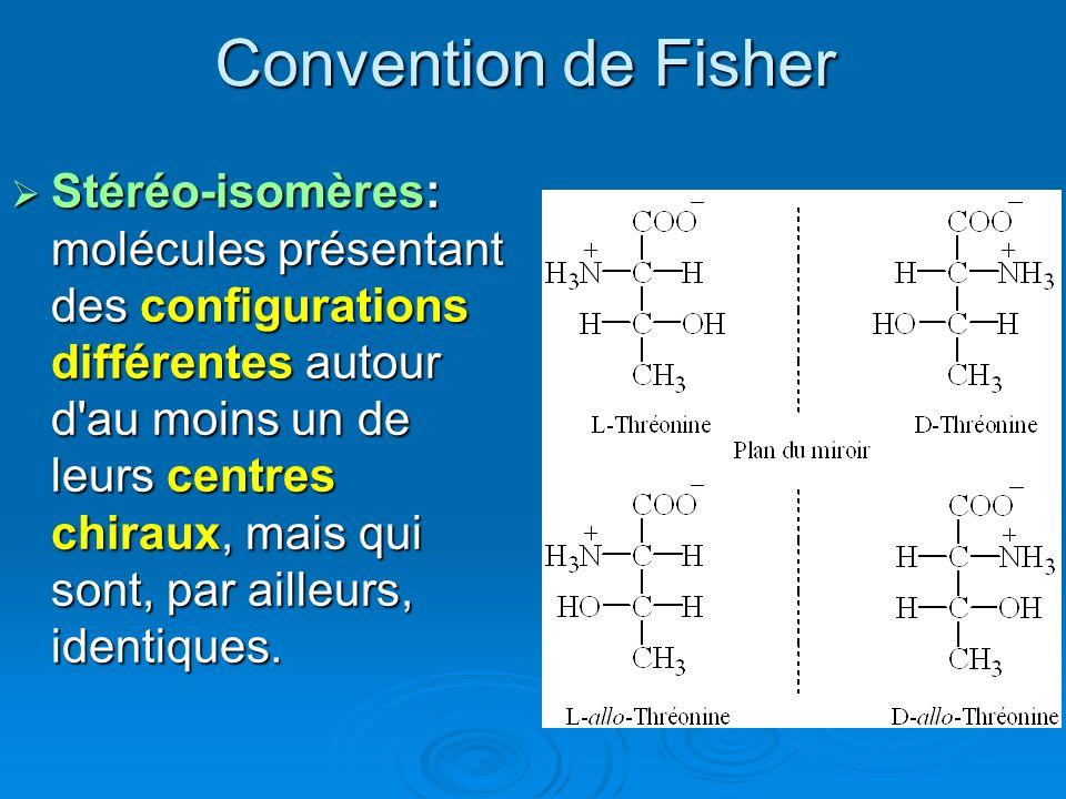 Convention de Fisher Stéréo-isomères: molécules présentant des configurations différentes autour d'au moins un de leurs centres chiraux, mais qui sont