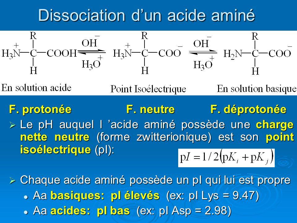 Dissociation dun acide aminé F. protonée F. neutre F. déprotonée Le pH auquel l acide aminé possède une charge nette neutre (forme zwitterionique) est