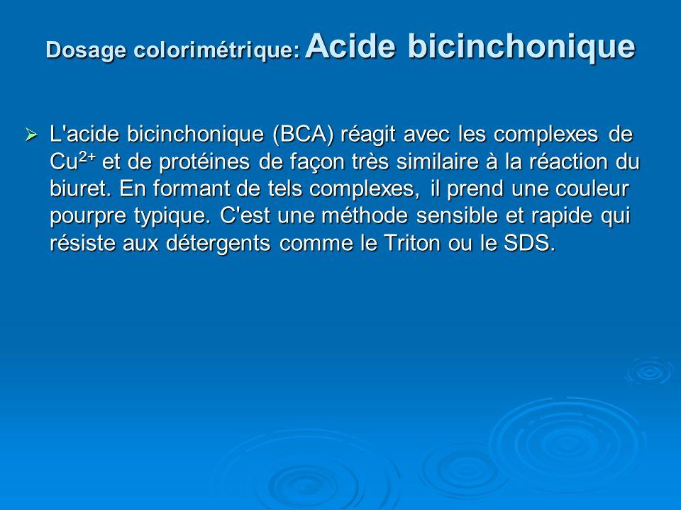 Dosage colorimétrique: Acide bicinchonique L'acide bicinchonique (BCA) réagit avec les complexes de Cu 2+ et de protéines de façon très similaire à la