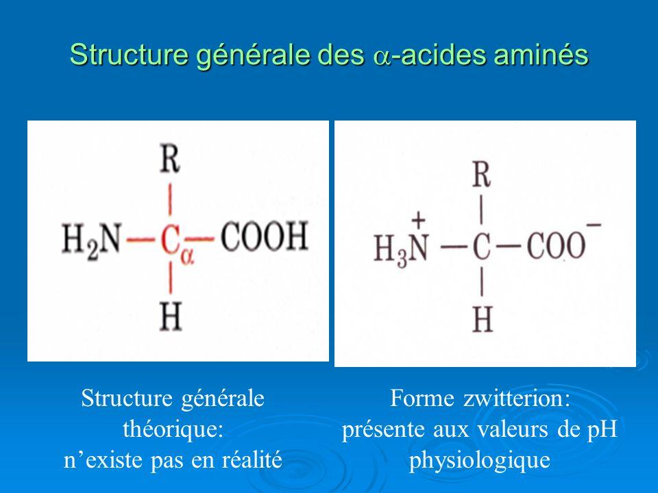 CLASSIFICATION DES ACIDES AMINES: selon le radical R plusieurs classifications ont été proposées : Selon la nature chimique de R Selon la nature chimique de R 1.