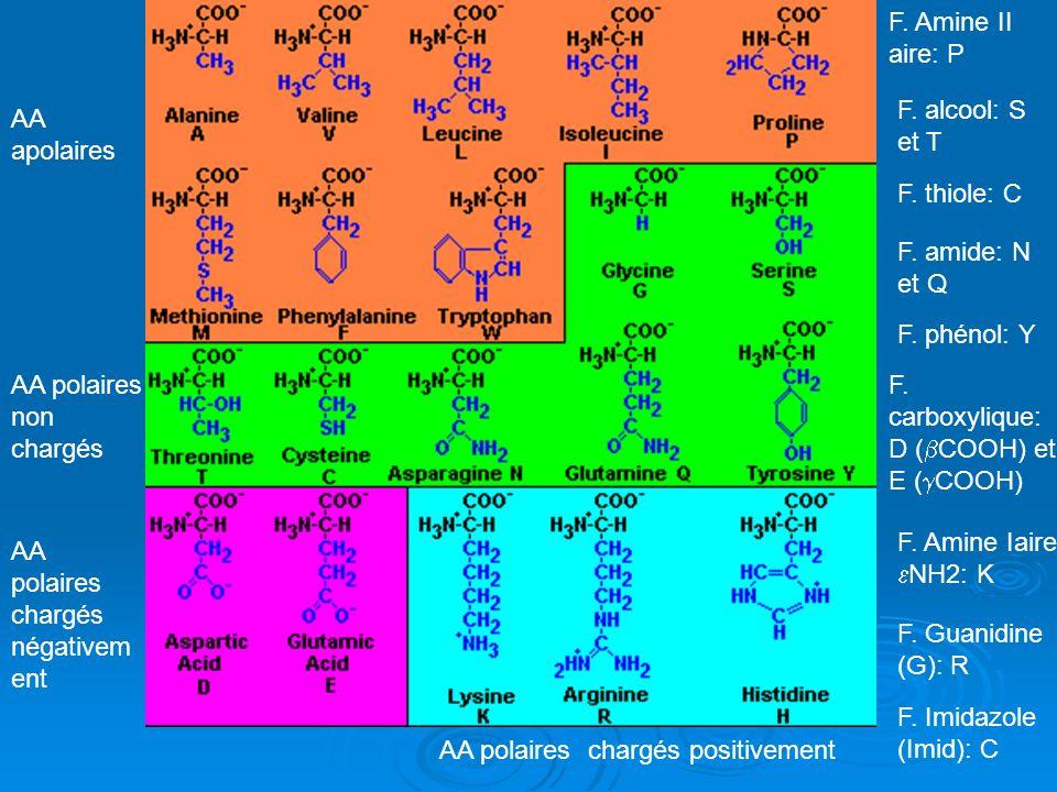 PROPRIETES PHYSICO-CHIMIQUES DES A.A Propriétés optiques: Propriétés optiques: * La lumière couvre un domaine dénergie variable allant des rayons, X, UV, Visible et IR.