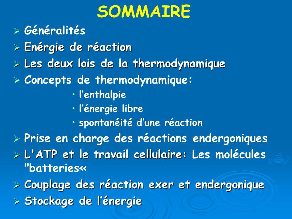 Généralités Enérgie de réaction Enérgie de réaction Les deux lois de la thermodynamique Les deux lois de la thermodynamique Concepts de thermodynamiqu