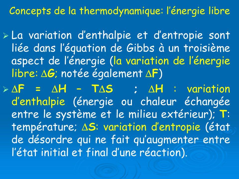 Concepts de la thermodynamique: lénergie libre La variation denthalpie et dentropie sont liée dans léquation de Gibbs à un troisième aspect de lénergi