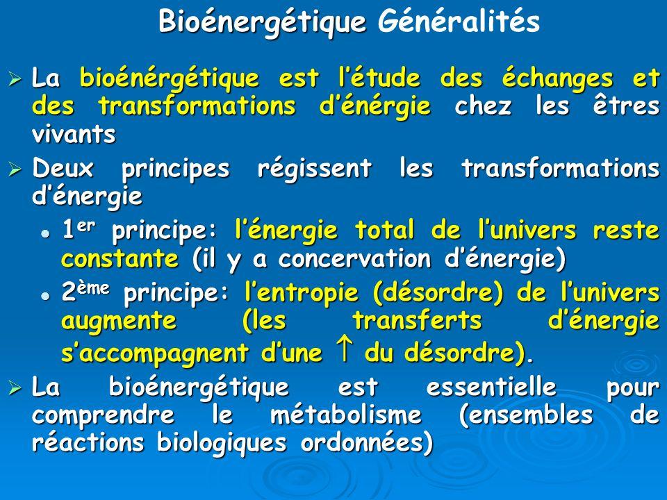 Transformations de lénergie Une propriété fondamentale des organismes vivants est de convertir lénergie en «travail biologique» Une propriété fondamentale des organismes vivants est de convertir lénergie en «travail biologique» La transduction énergétique transforme lénergie chimique [provenant des nutriments oxydés (cas des hétérotrophes)] ou lénergie lumineuse [cas des phototrophes] en: La transduction énergétique transforme lénergie chimique [provenant des nutriments oxydés (cas des hétérotrophes)] ou lénergie lumineuse [cas des phototrophes] en: ATP, pour la synthèse de macromolécules complexes, ATP, pour la synthèse de macromolécules complexes, gradients électrochimiques, gradients électrochimiques, mouvement, chaleur, … mouvement, chaleur, …