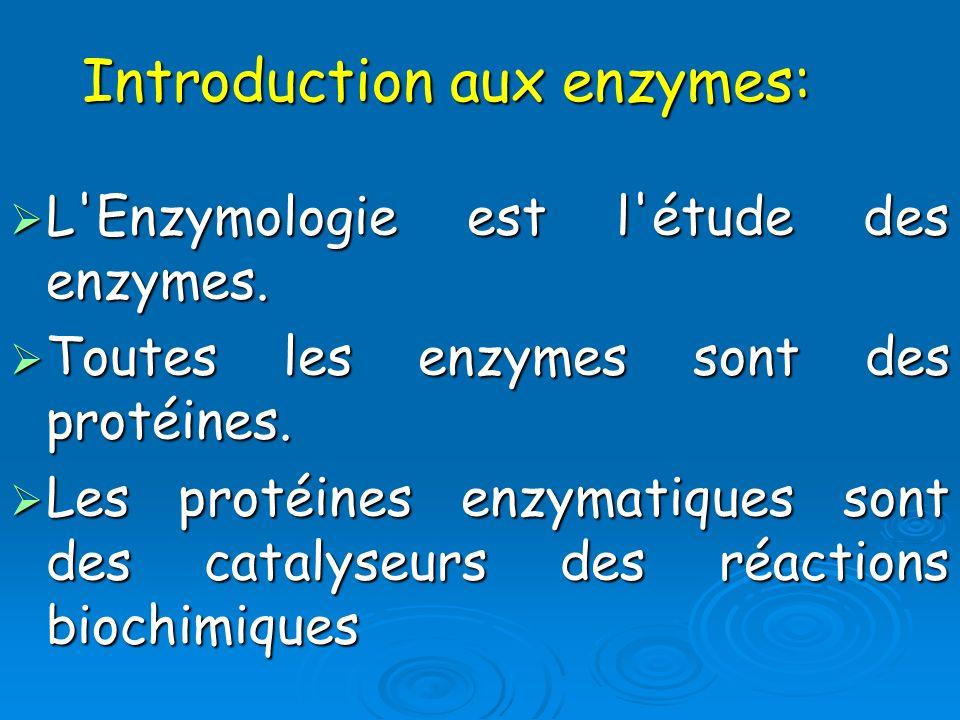 L'Enzymologie est l'étude des enzymes. L'Enzymologie est l'étude des enzymes. Toutes les enzymes sont des protéines. Toutes les enzymes sont des proté