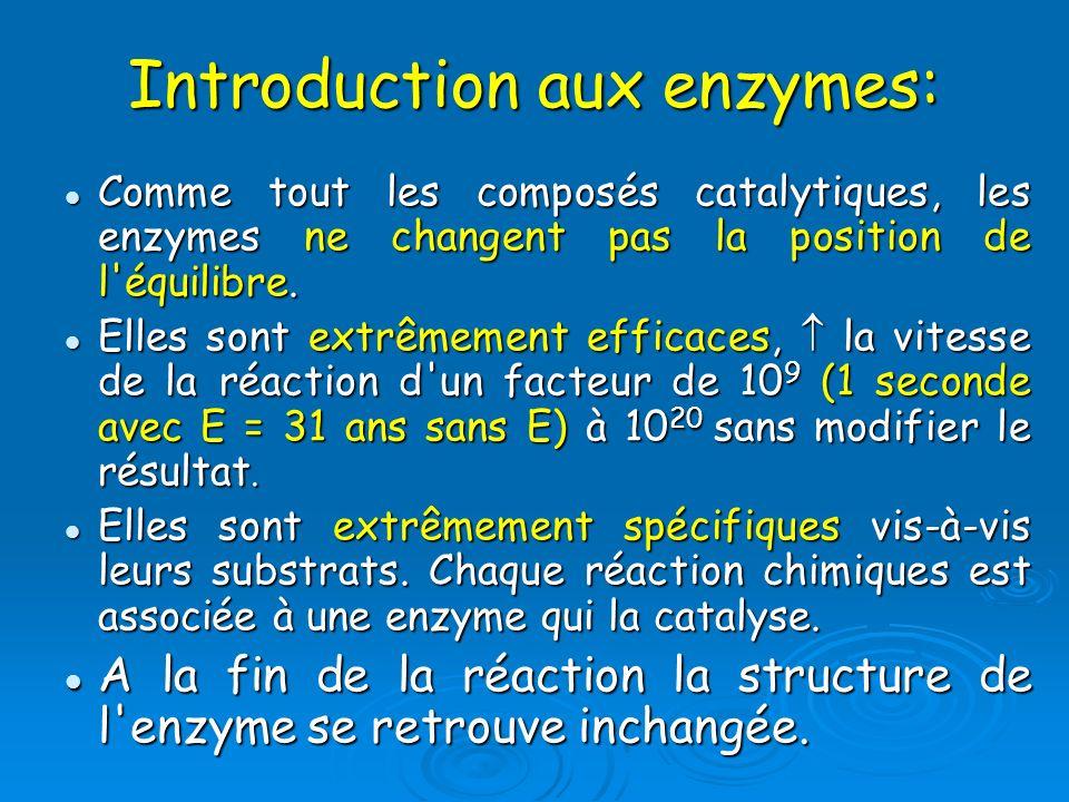 Comme tout les composés catalytiques, les enzymes ne changent pas la position de l'équilibre. Comme tout les composés catalytiques, les enzymes ne cha