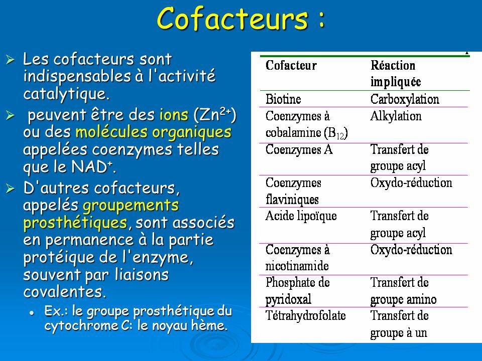 Cofacteurs : Les cofacteurs sont indispensables à l'activité catalytique. Les cofacteurs sont indispensables à l'activité catalytique. peuvent être de