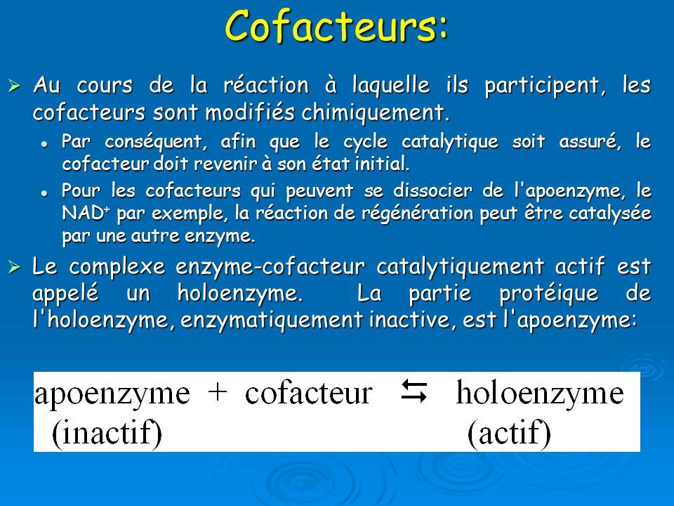 Cofacteurs: Au cours de la réaction à laquelle ils participent, les cofacteurs sont modifiés chimiquement. Au cours de la réaction à laquelle ils part